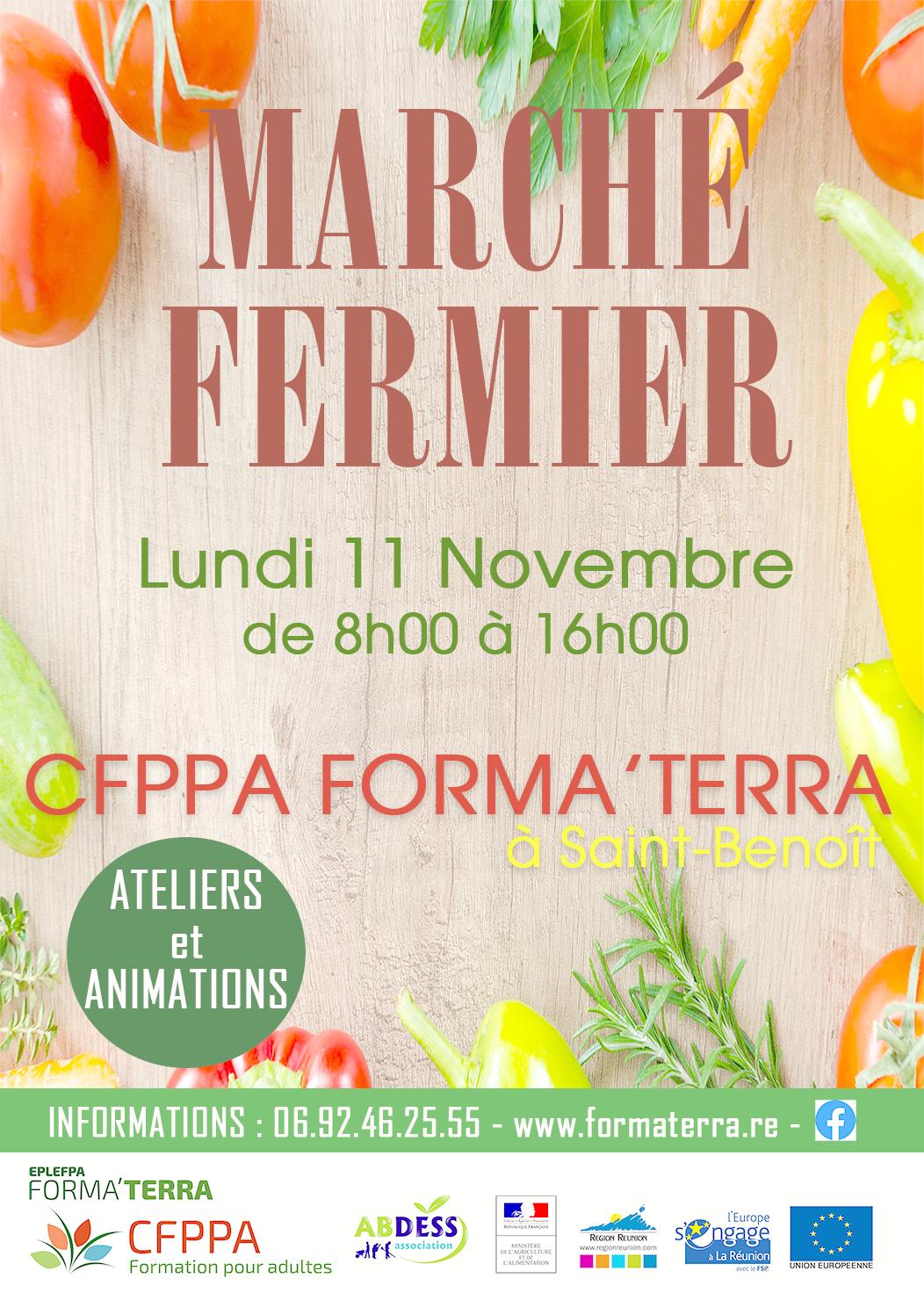 Affiche_marche_fermier_CFPPA_StBenoit_11nov_@0,3x