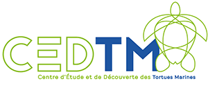 logo_Cedtm_